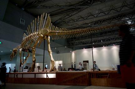スピノサウルス超巨大1.jpg