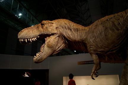 ティラノサウルス1.jpg