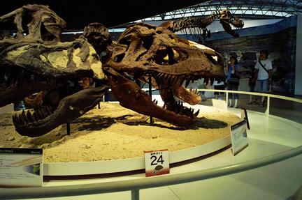 ティラノサウルス5.jpg