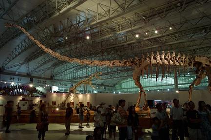 マメンチサウルス(30m).jpg